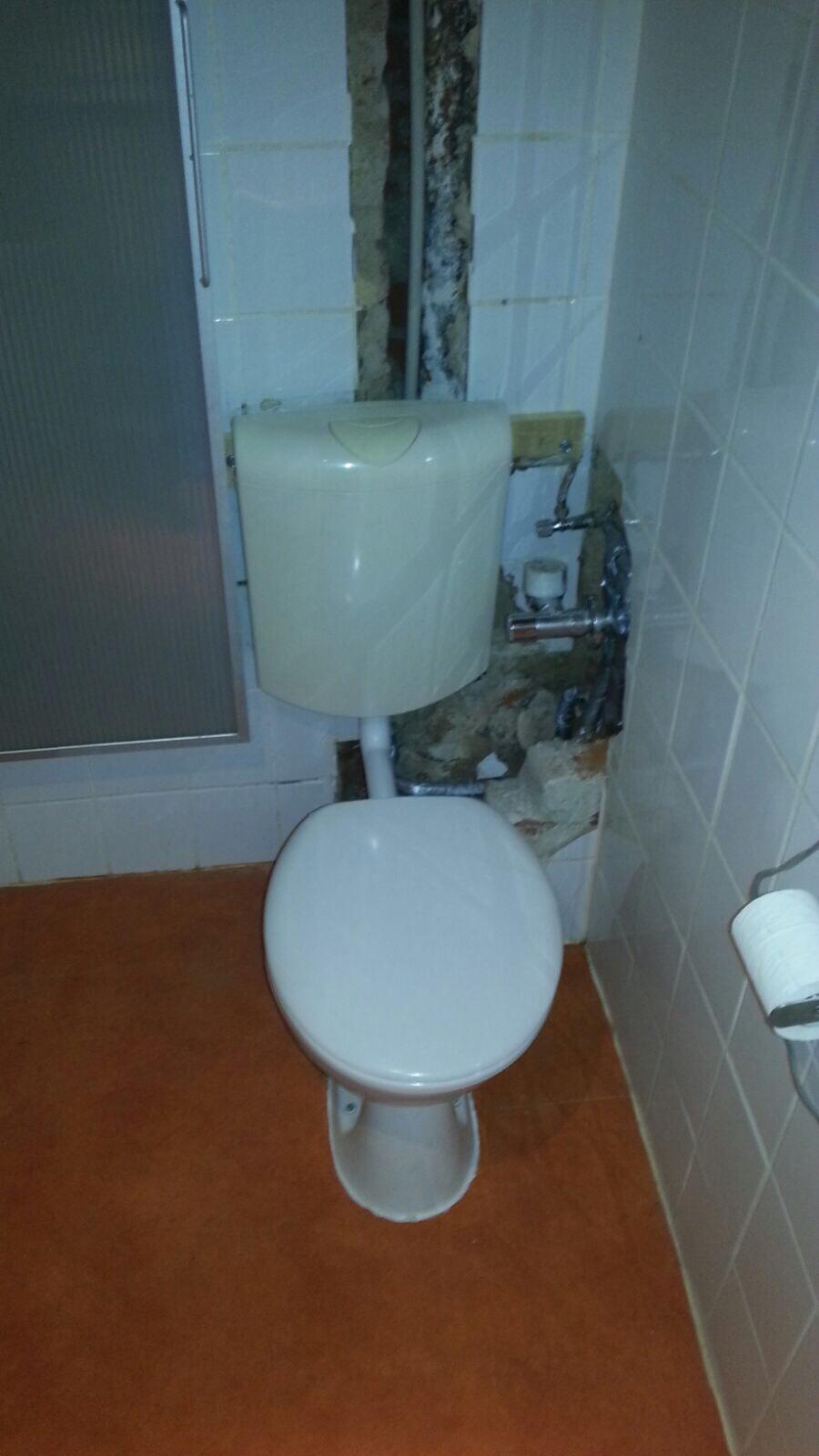 Gäste WC Altbestand vor Sanierung
